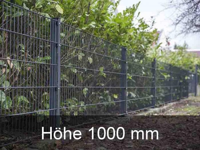 868 Doppelstabmattenzaun Höhe 1000mm