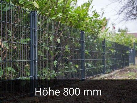 868 Doppelstabmattenzaun Höhe 800mm
